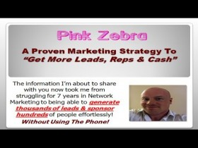 Pink Zebra | A Proven Way To Get More Leads & Reps